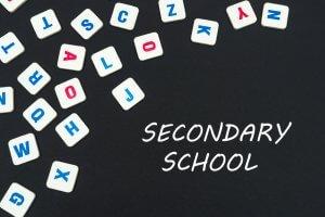 Secondary School English