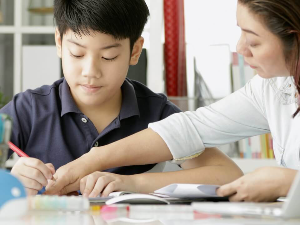 Tutor teaching a student